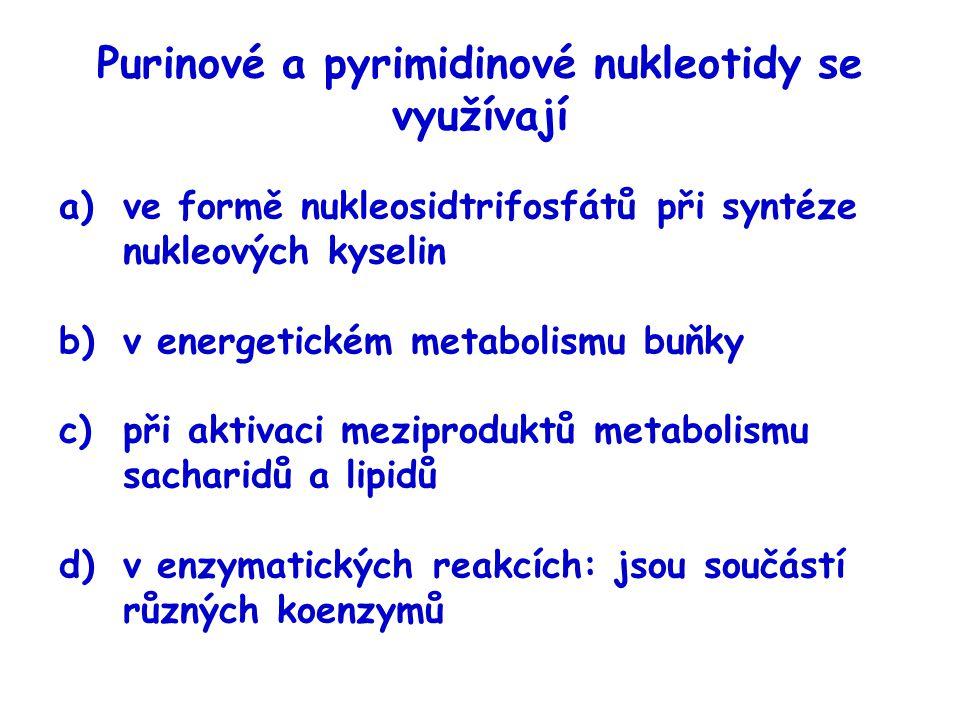 Purinové a pyrimidinové nukleotidy se využívají