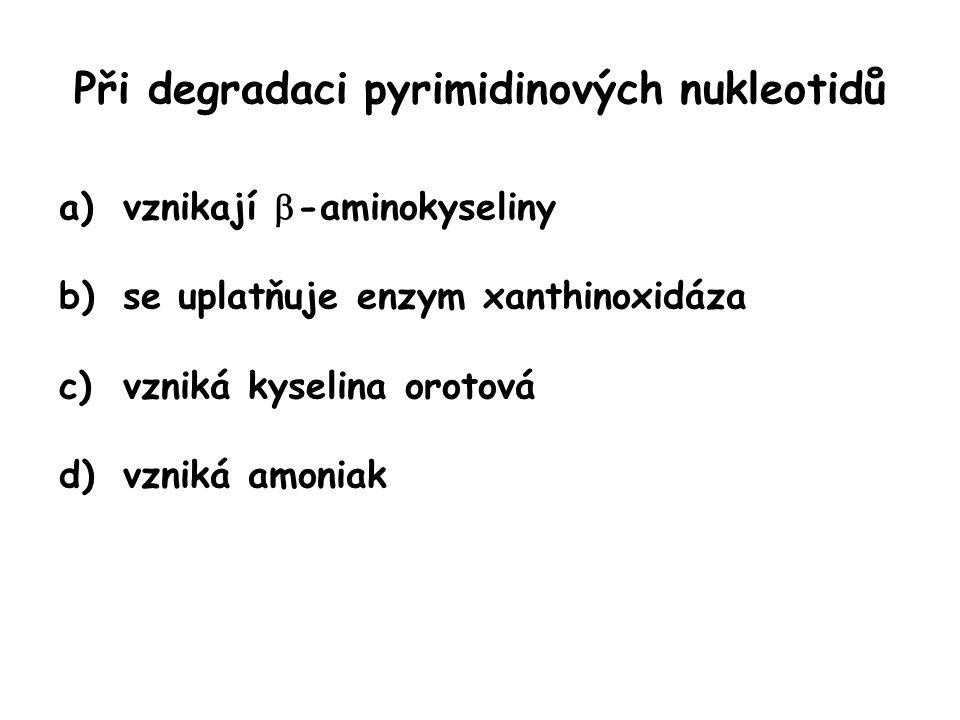 Při degradaci pyrimidinových nukleotidů