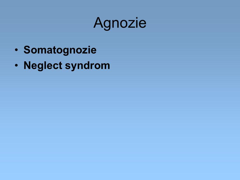 Agnozie Somatognozie Neglect syndrom