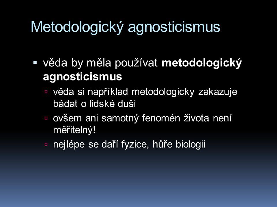 Metodologický agnosticismus