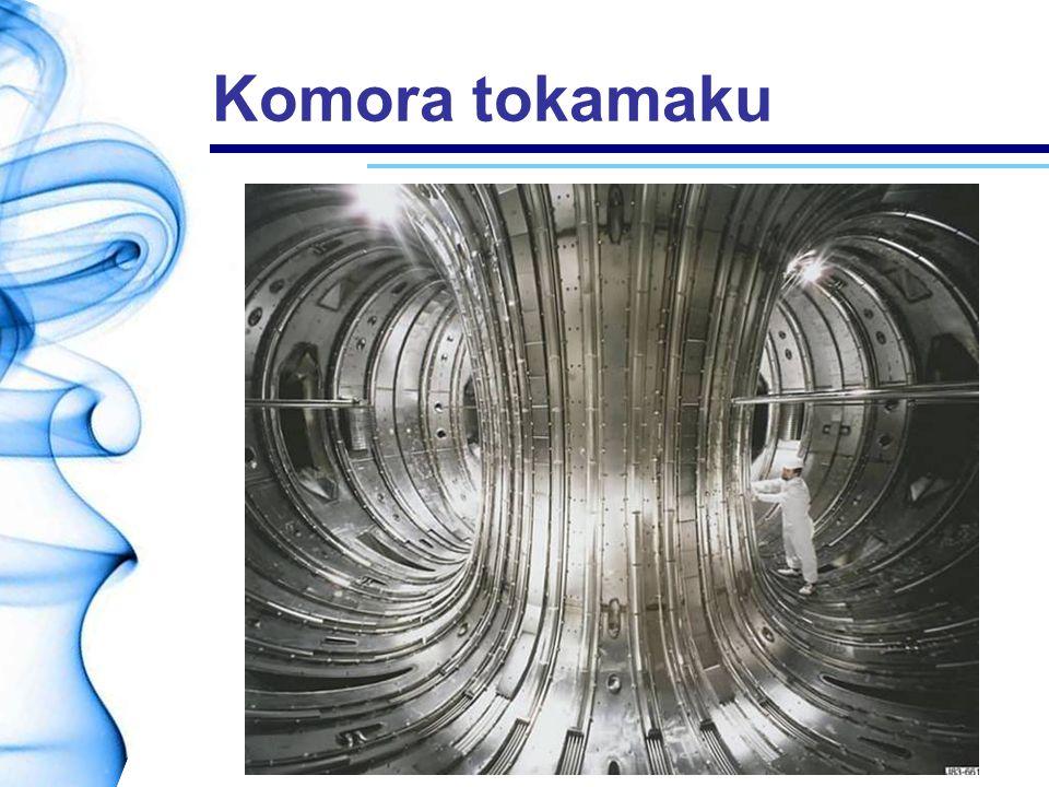 Komora tokamaku