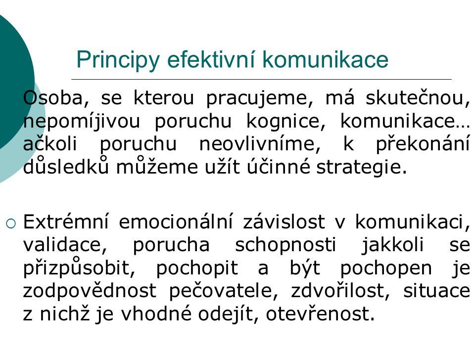 Principy efektivní komunikace