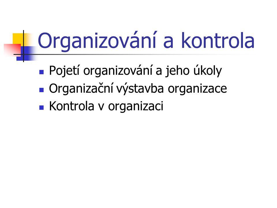 Organizování a kontrola