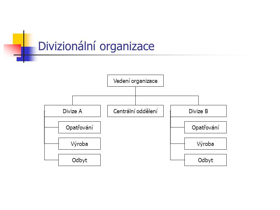 Divizionální organizace