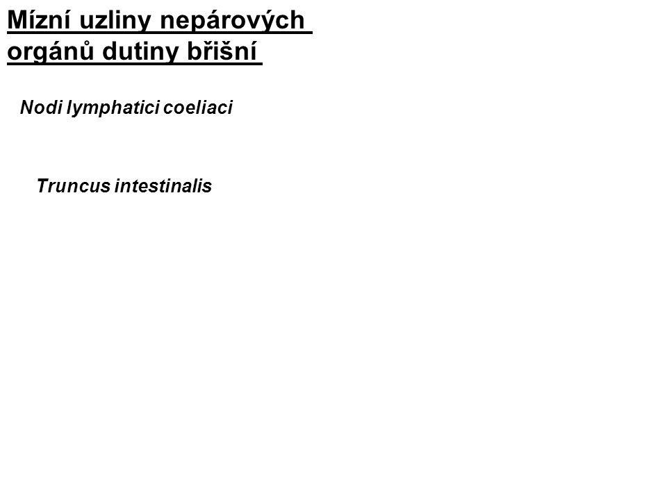 Mízní uzliny nepárových orgánů dutiny břišní