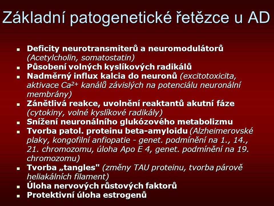 Základní patogenetické řetězce u AD