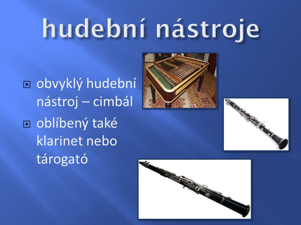 hudební nástroje obvyklý hudební nástroj – cimbál