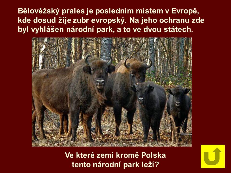 Ve které zemi kromě Polska tento národní park leží