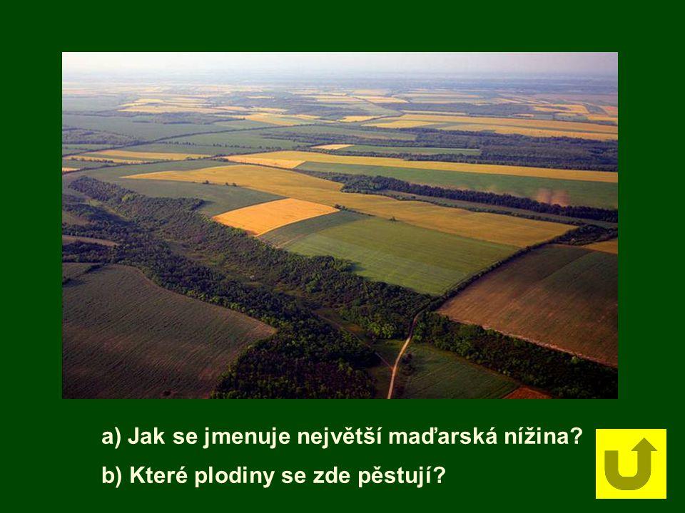 a) Jak se jmenuje největší maďarská nížina