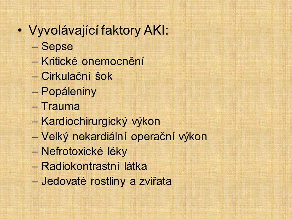 Vyvolávající faktory AKI: