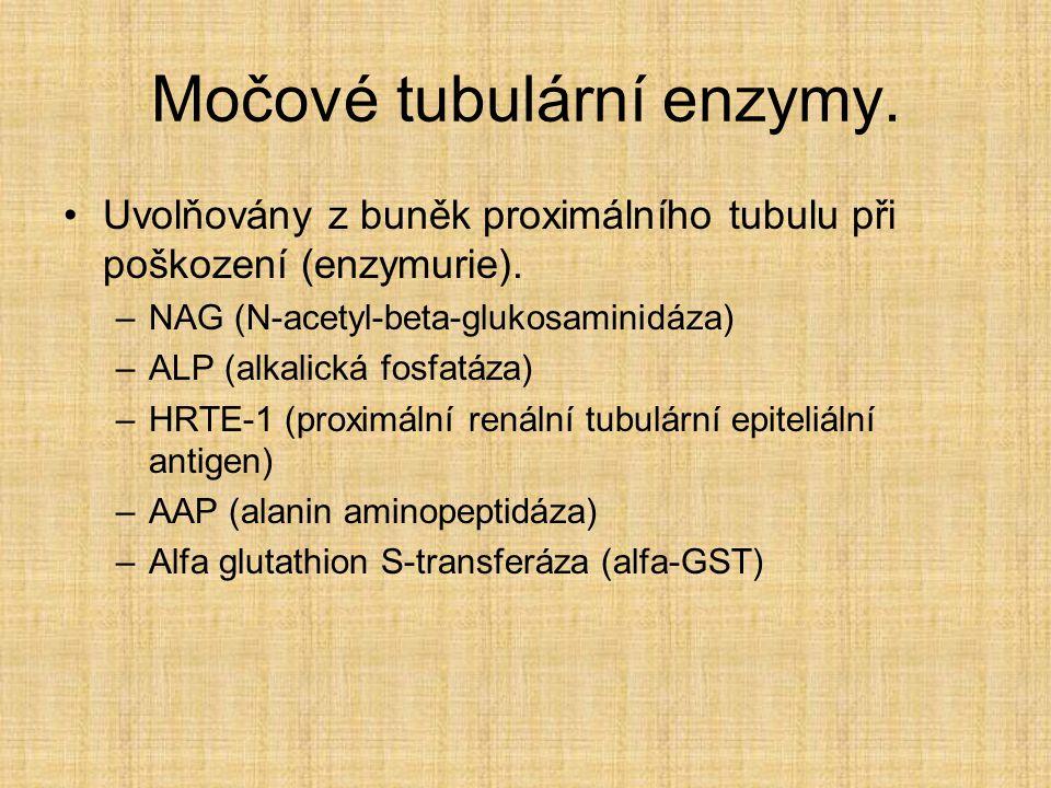 Močové tubulární enzymy.