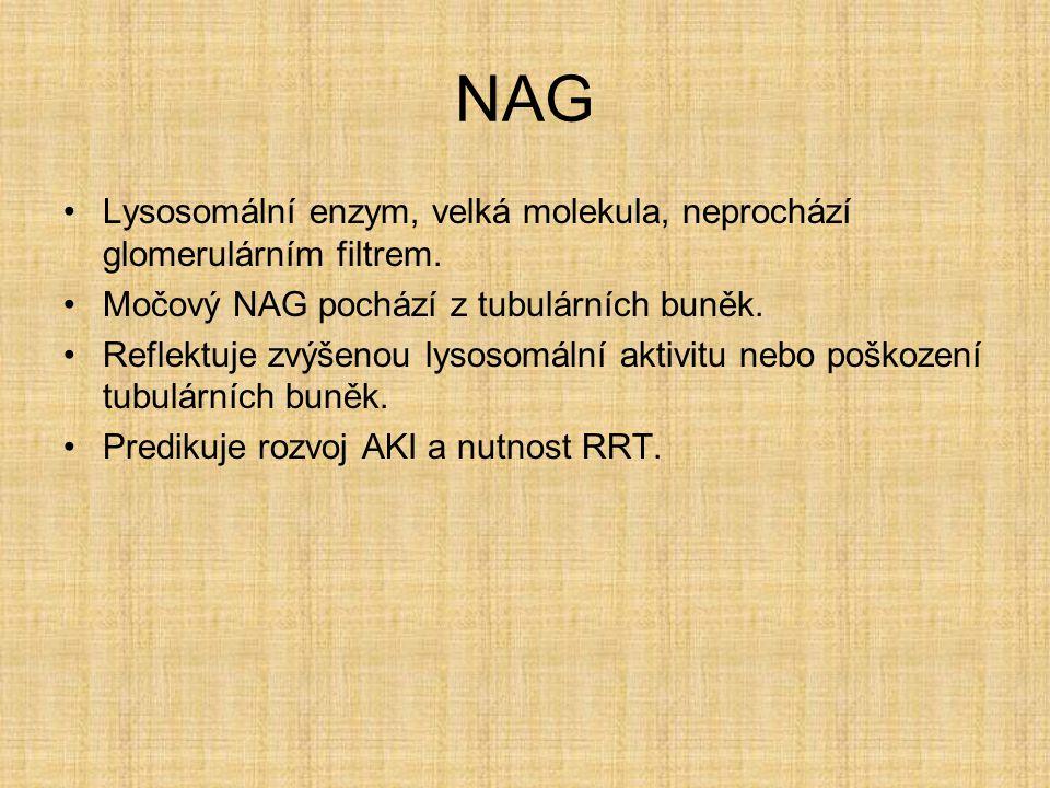 NAG Lysosomální enzym, velká molekula, neprochází glomerulárním filtrem. Močový NAG pochází z tubulárních buněk.