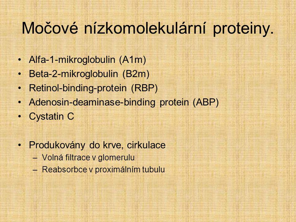Močové nízkomolekulární proteiny.
