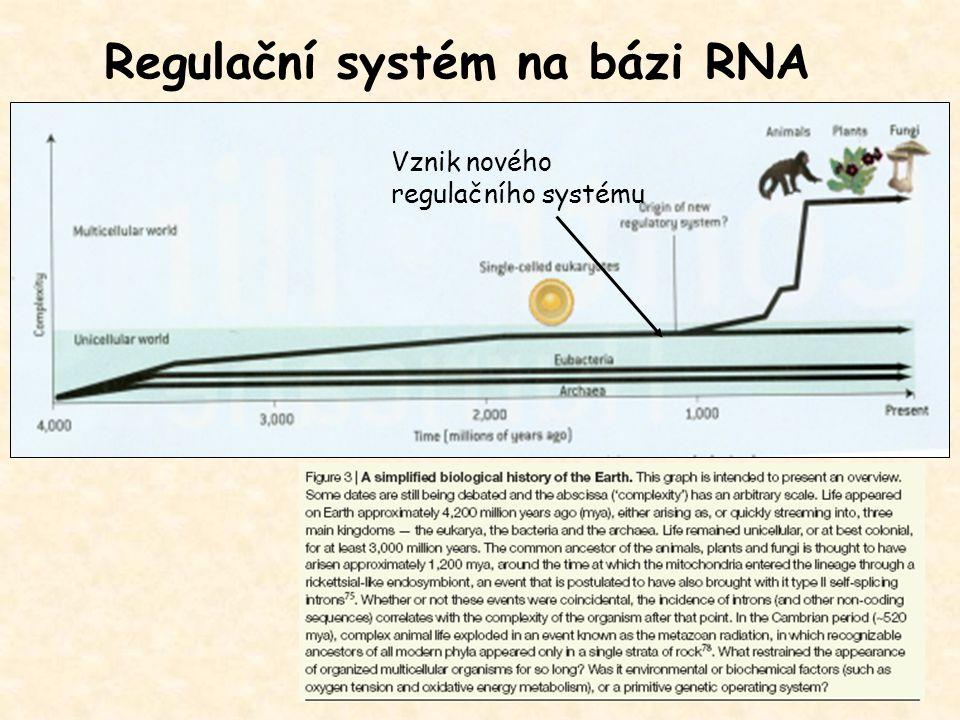 Regulační systém na bázi RNA