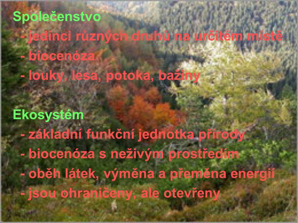 - jedinci různých druhů na určitém místě - biocenóza