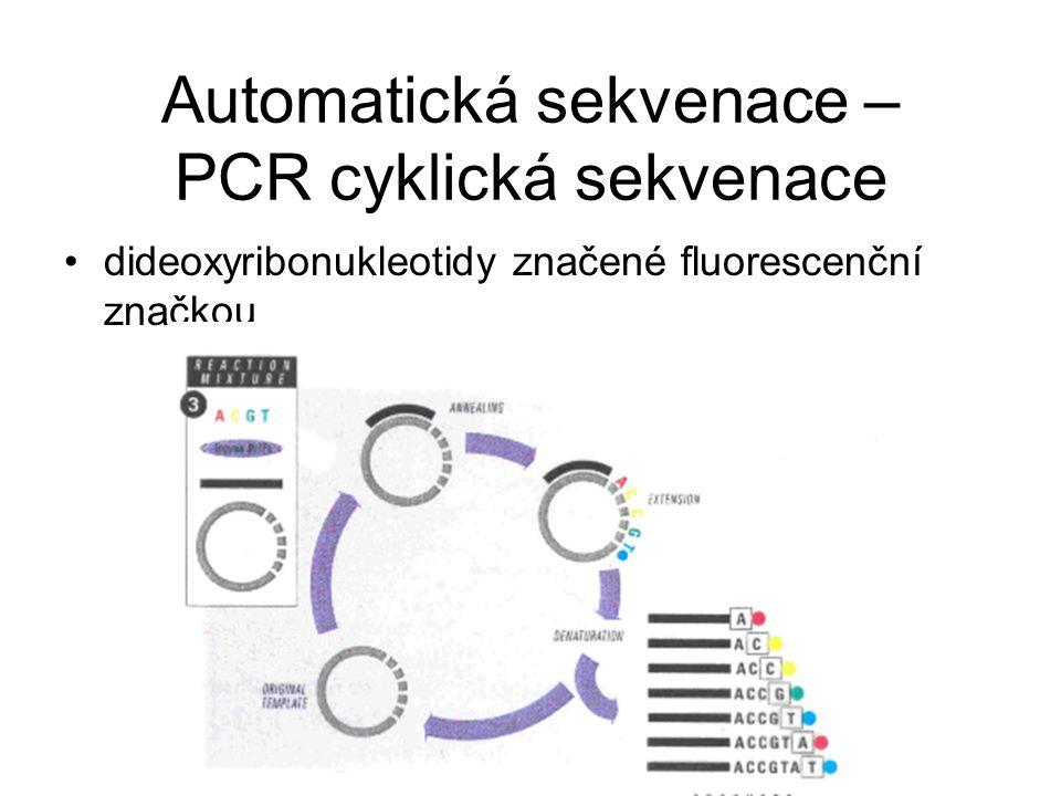 Automatická sekvenace – PCR cyklická sekvenace