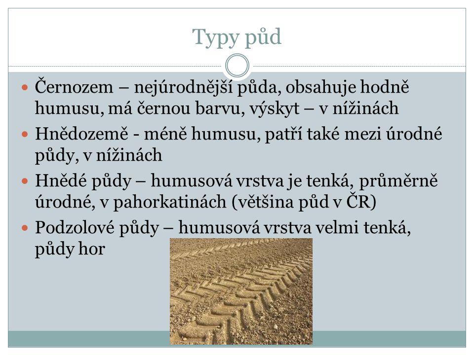 Typy půd Černozem – nejúrodnější půda, obsahuje hodně humusu, má černou barvu, výskyt – v nížinách.