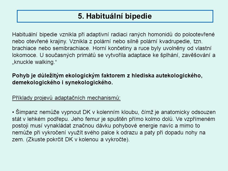5. Habituální bipedie