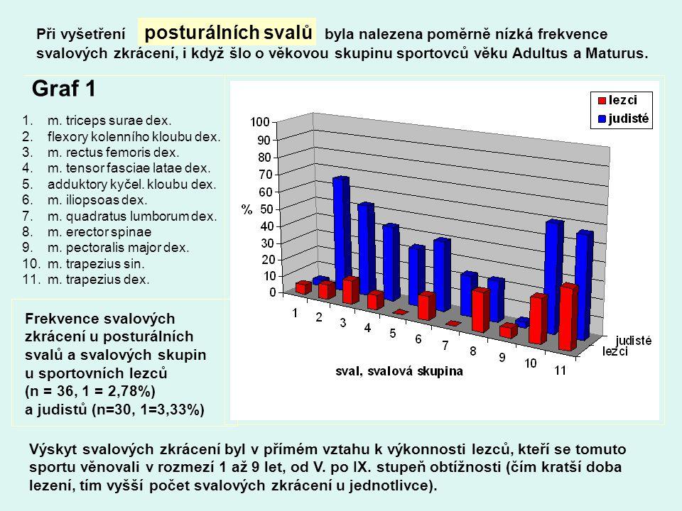 Při vyšetření posturálních svalů byla nalezena poměrně nízká frekvence svalových zkrácení, i když šlo o věkovou skupinu sportovců věku Adultus a Maturus.