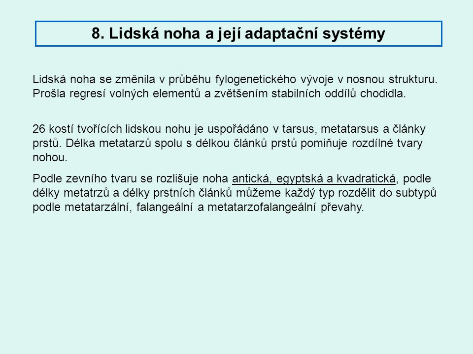 8. Lidská noha a její adaptační systémy