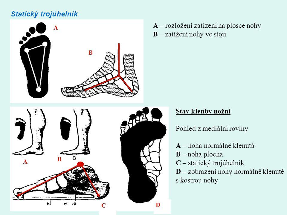 A – rozložení zatížení na plosce nohy B – zatížení nohy ve stoji