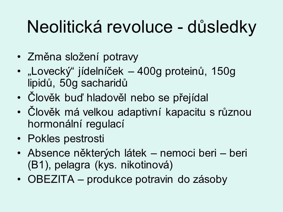 Neolitická revoluce - důsledky