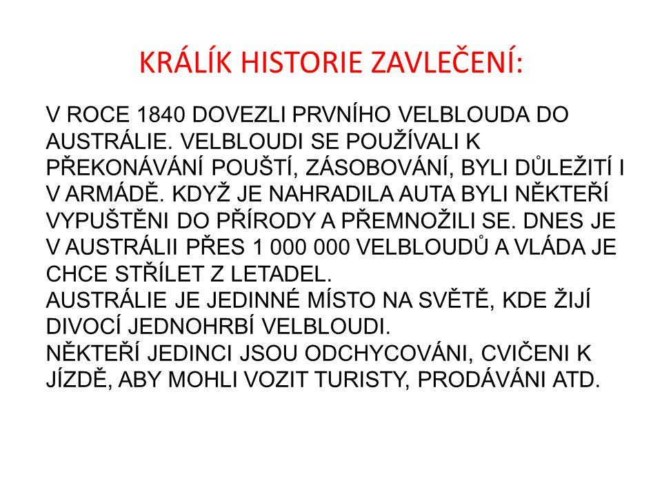 KRÁLÍK HISTORIE ZAVLEČENÍ: