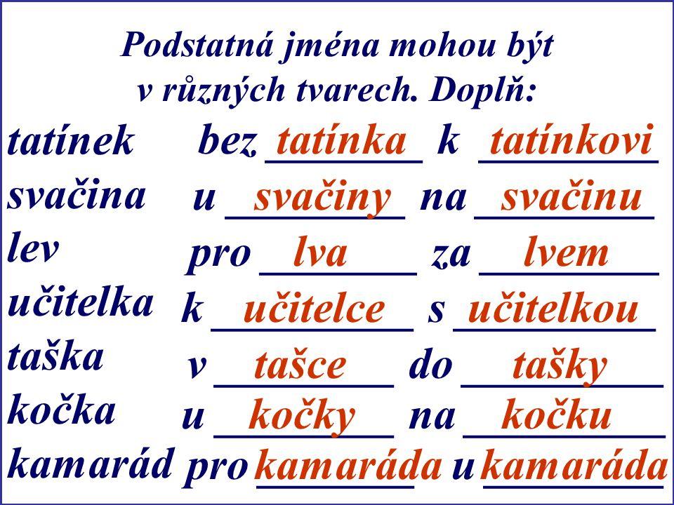 Podstatná jména mohou být v různých tvarech. Doplň: