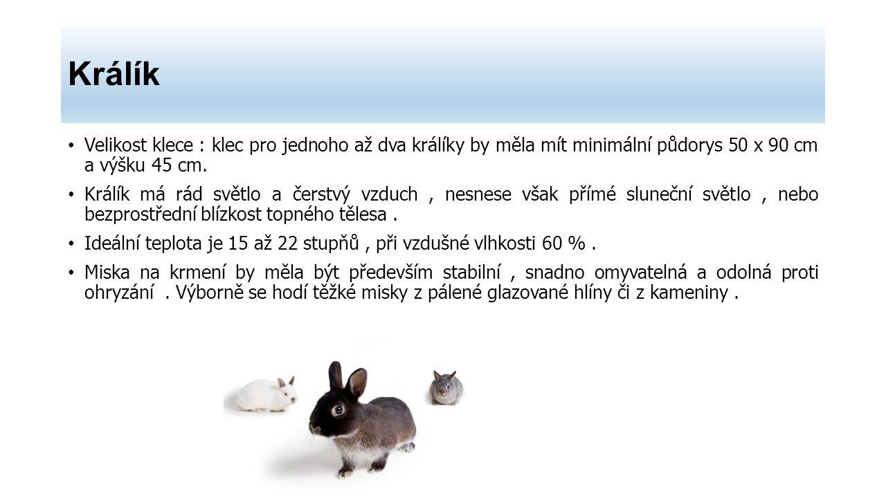 Králík Velikost klece : klec pro jednoho až dva králíky by měla mít minimální půdorys 50 x 90 cm a výšku 45 cm.