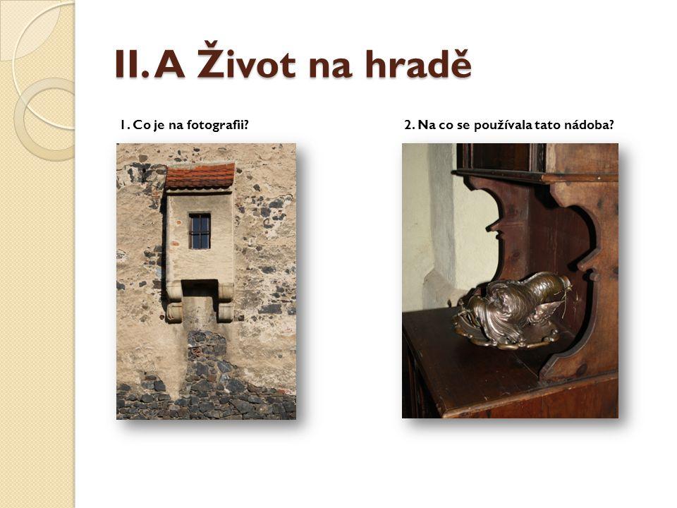 II. A Život na hradě 1. Co je na fotografii