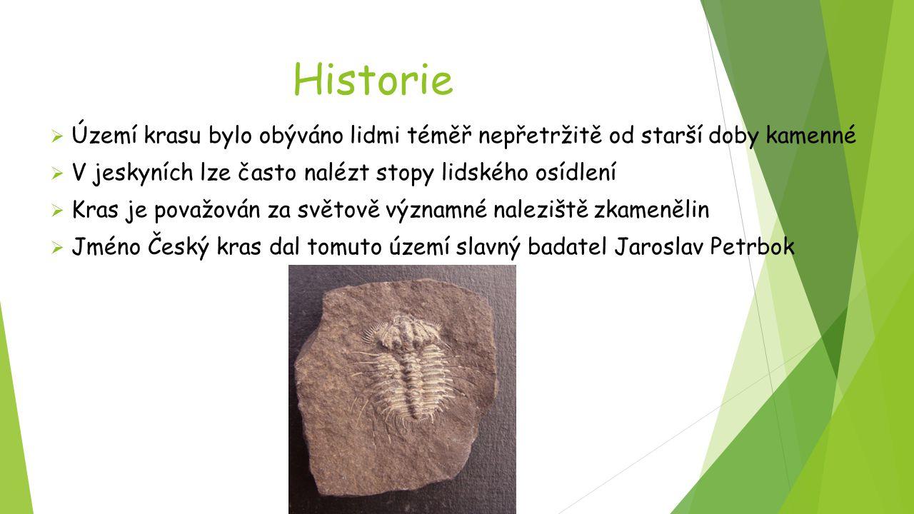 Historie Území krasu bylo obýváno lidmi téměř nepřetržitě od starší doby kamenné. V jeskyních lze často nalézt stopy lidského osídlení.