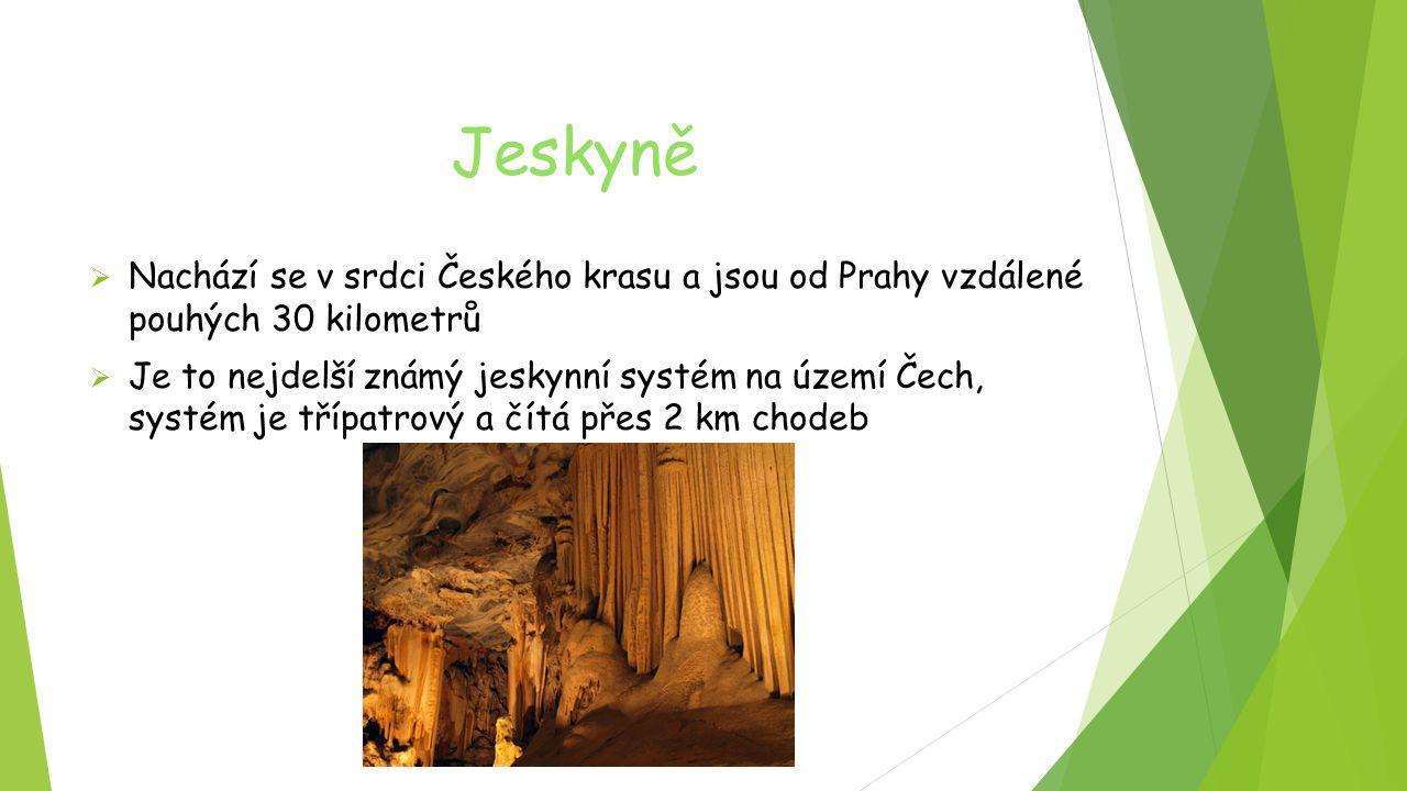 Jeskyně Nachází se v srdci Českého krasu a jsou od Prahy vzdálené pouhých 30 kilometrů.