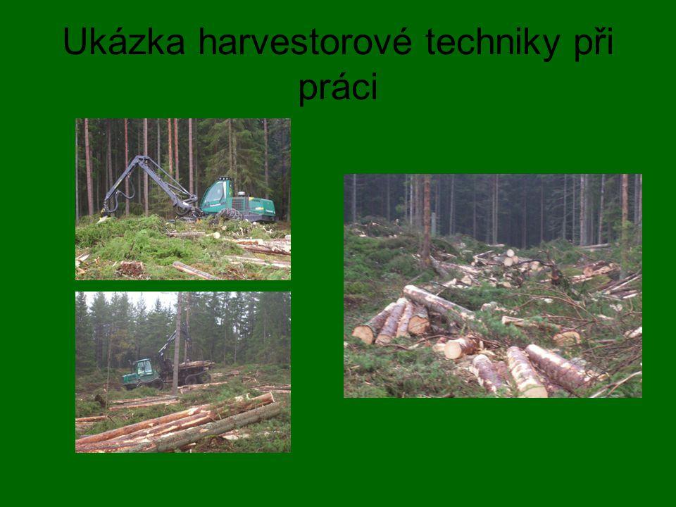 Ukázka harvestorové techniky při práci