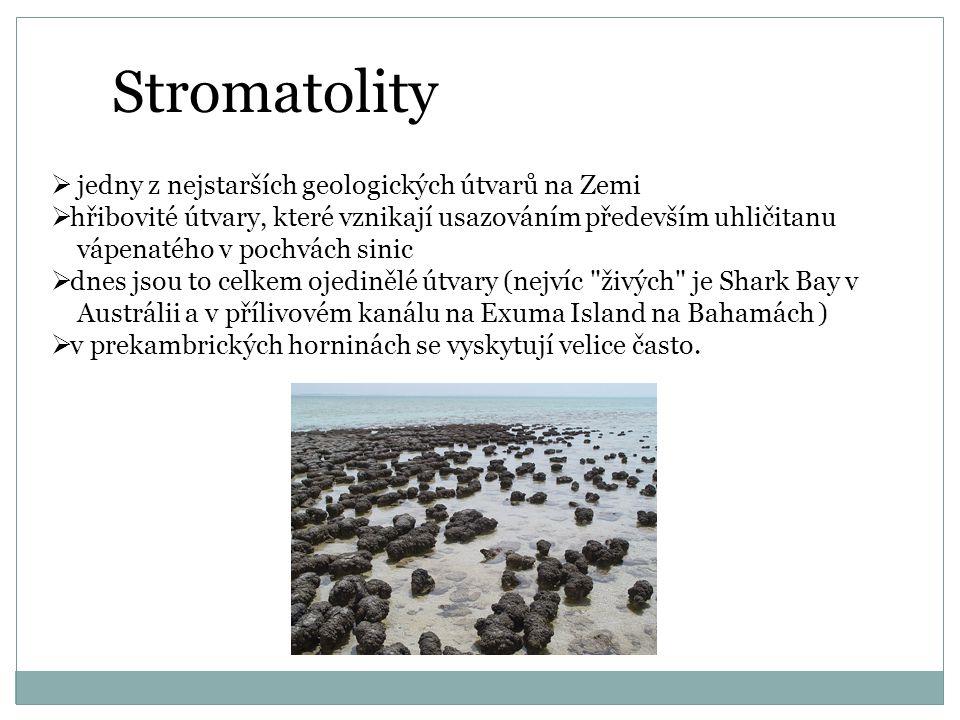 Stromatolity jedny z nejstarších geologických útvarů na Zemi