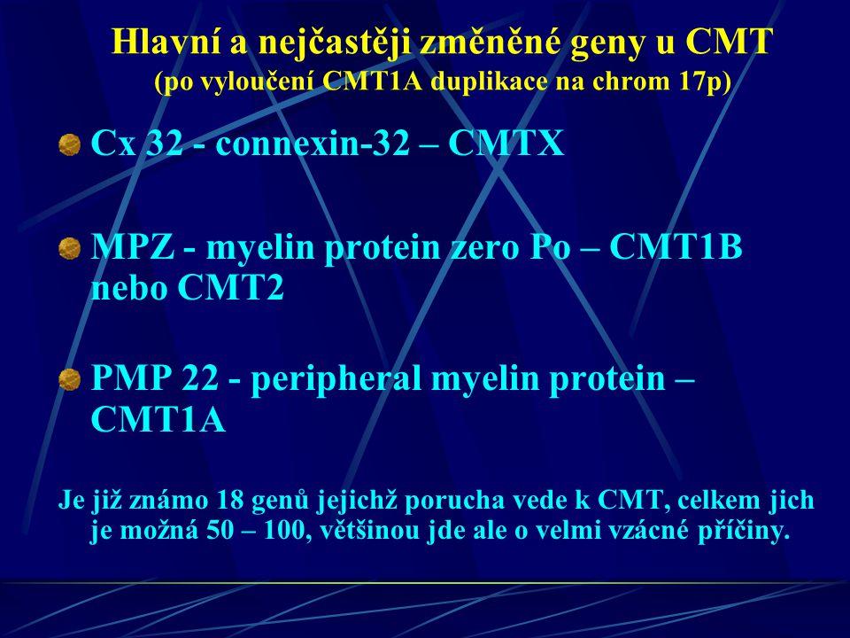 MPZ - myelin protein zero Po – CMT1B nebo CMT2