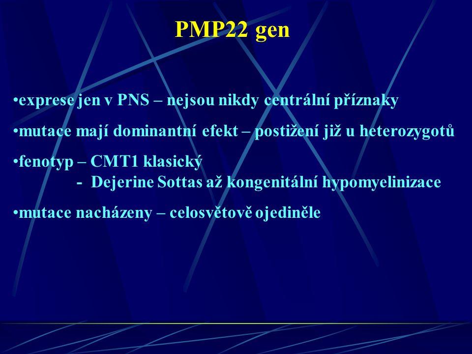PMP22 gen exprese jen v PNS – nejsou nikdy centrální příznaky