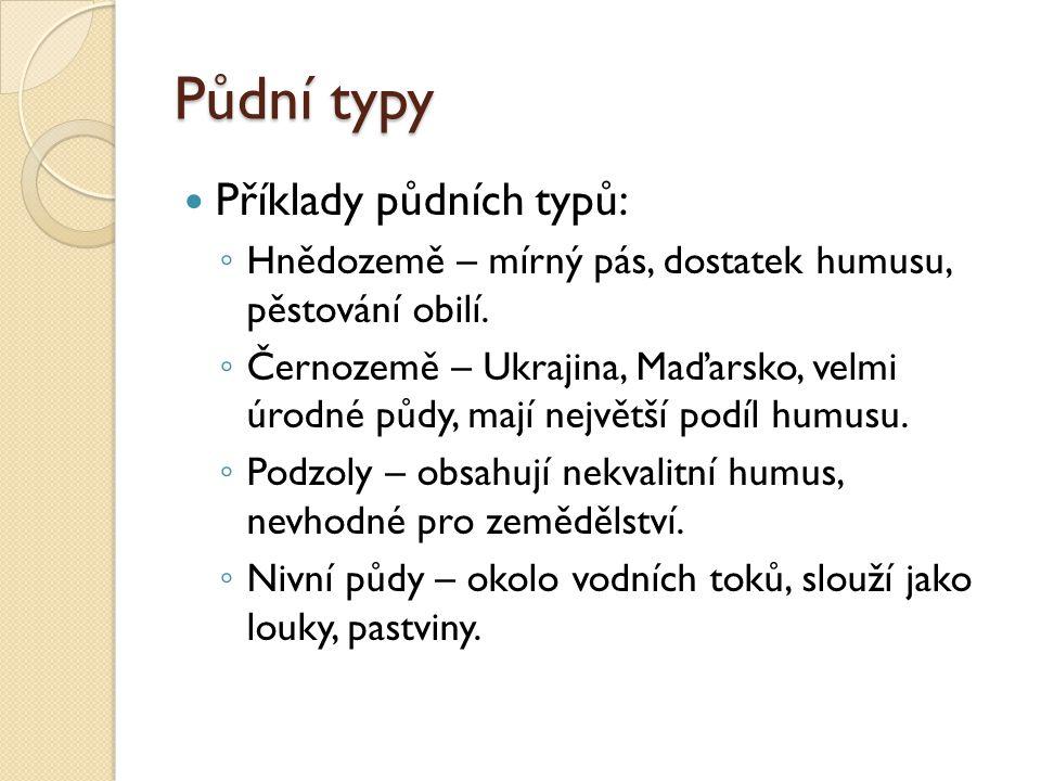 Půdní typy Příklady půdních typů: