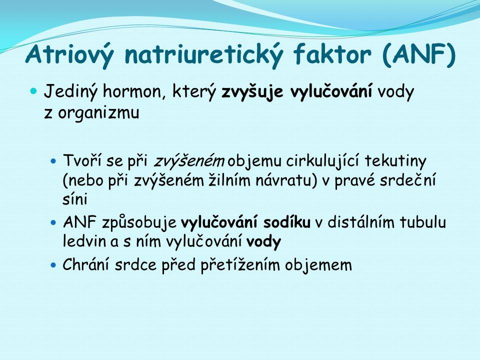 Atriový natriuretický faktor (ANF)