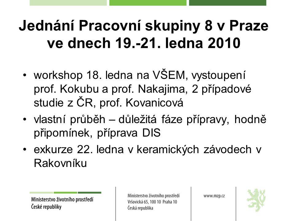 Jednání Pracovní skupiny 8 v Praze ve dnech 19.-21. ledna 2010