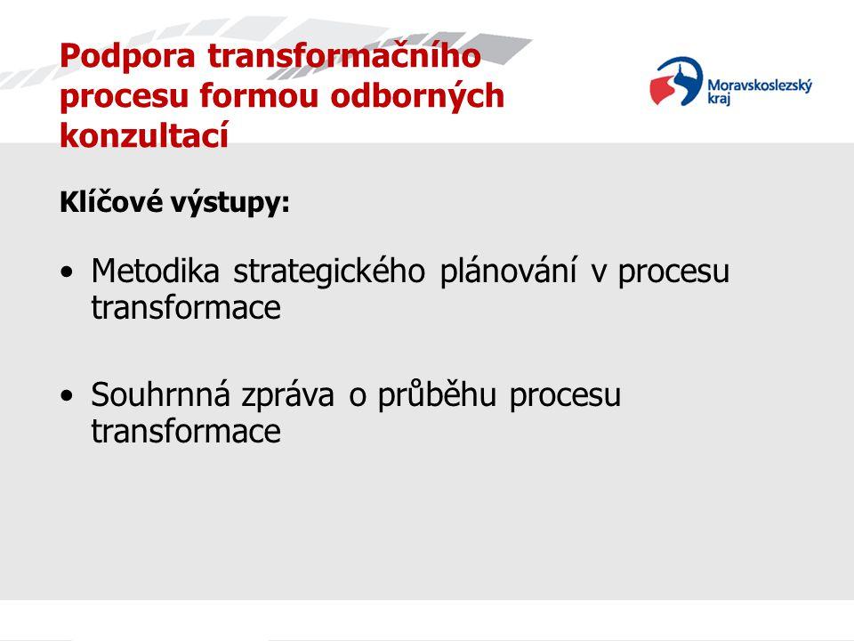 Podpora transformačního procesu formou odborných konzultací