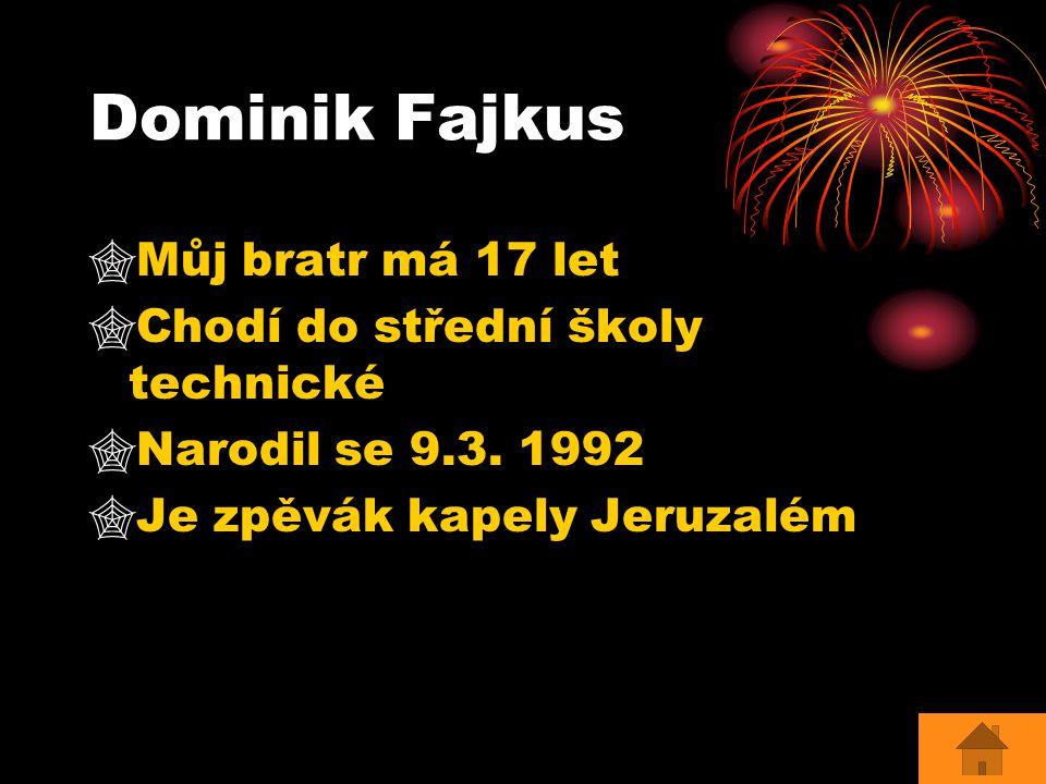 Dominik Fajkus Můj bratr má 17 let Chodí do střední školy technické