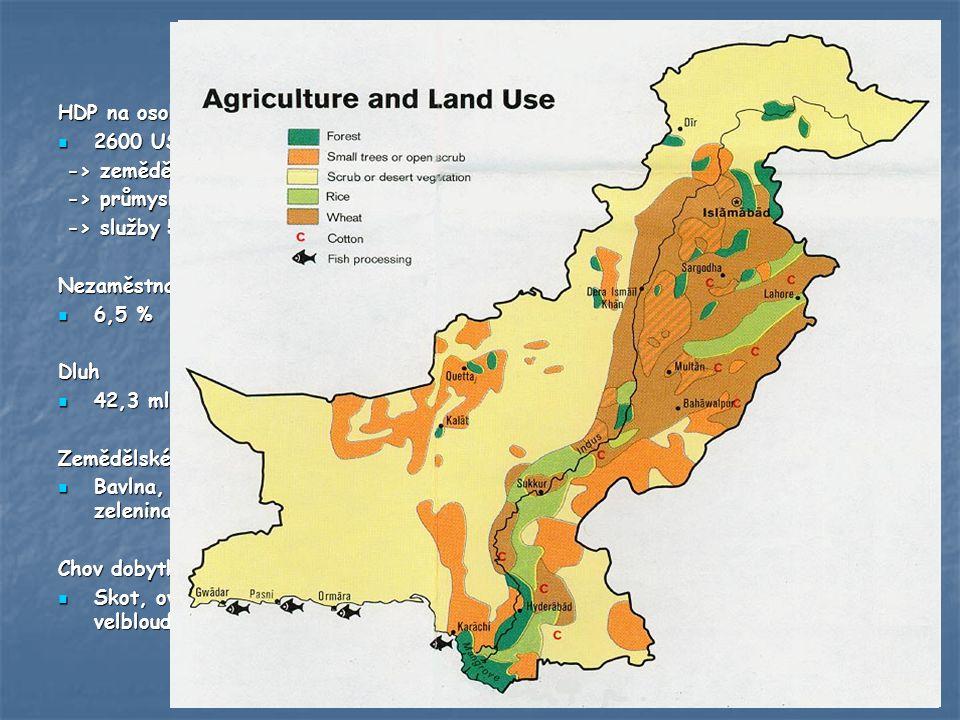 Hospodářství HDP na osobu 2600 USD -> zemědělství 22%