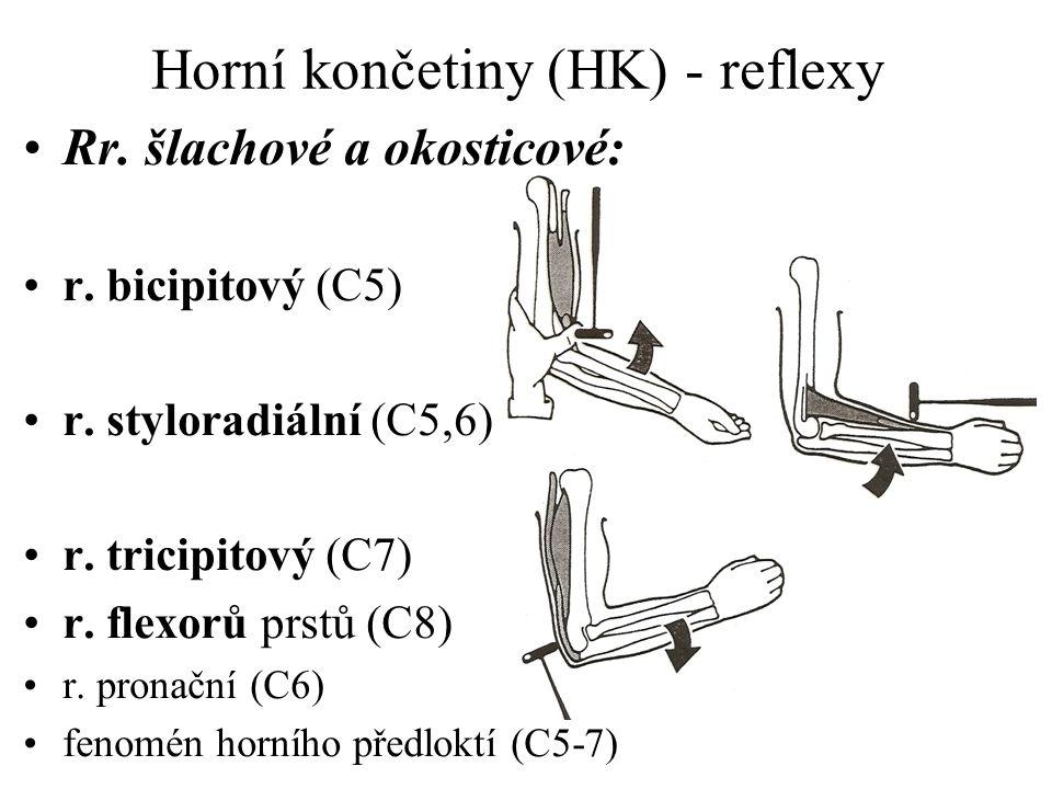Horní končetiny (HK) - reflexy