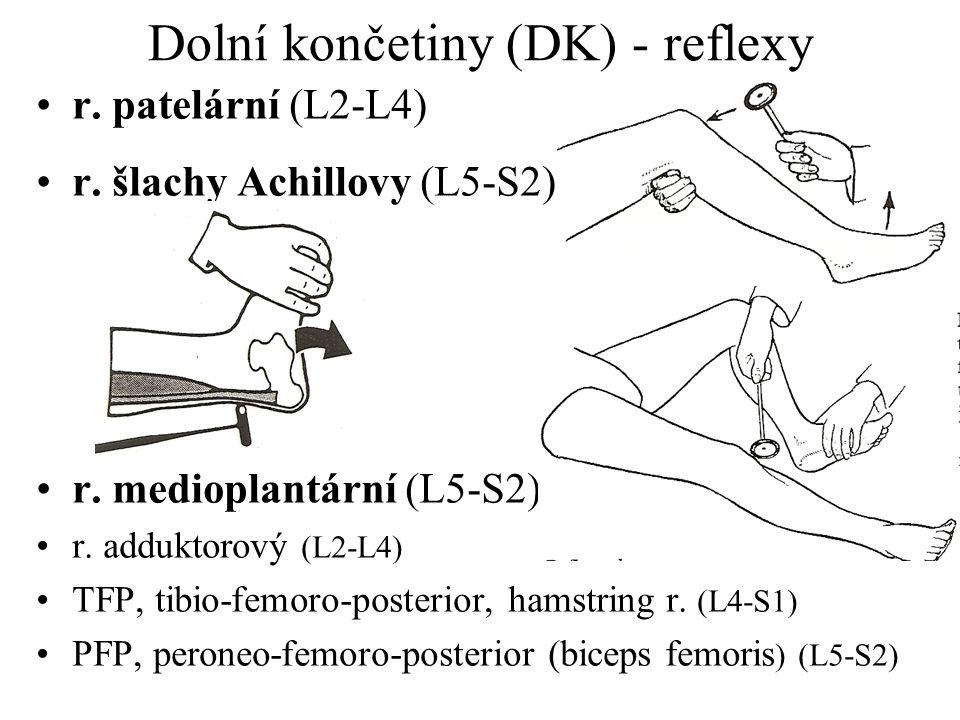 Dolní končetiny (DK) - reflexy