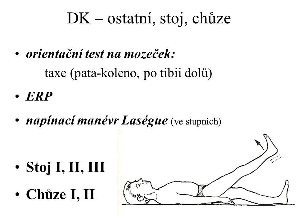 DK – ostatní, stoj, chůze Stoj I, II, III Chůze I, II
