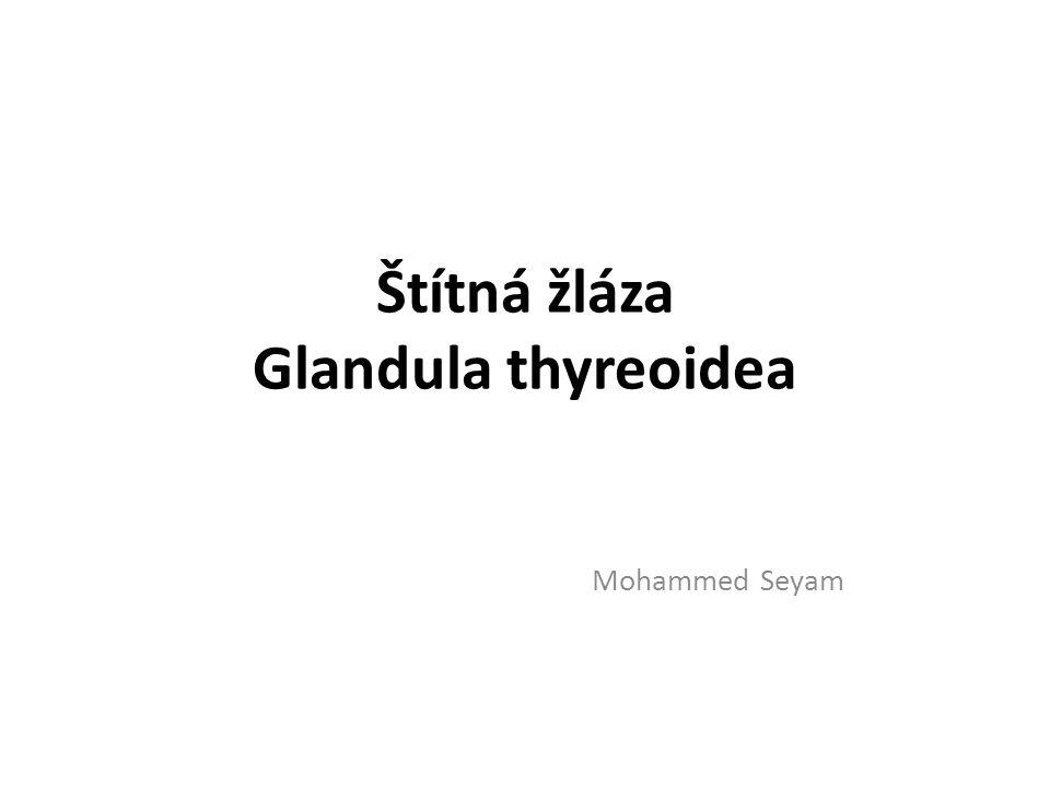 Štítná žláza Glandula thyreoidea