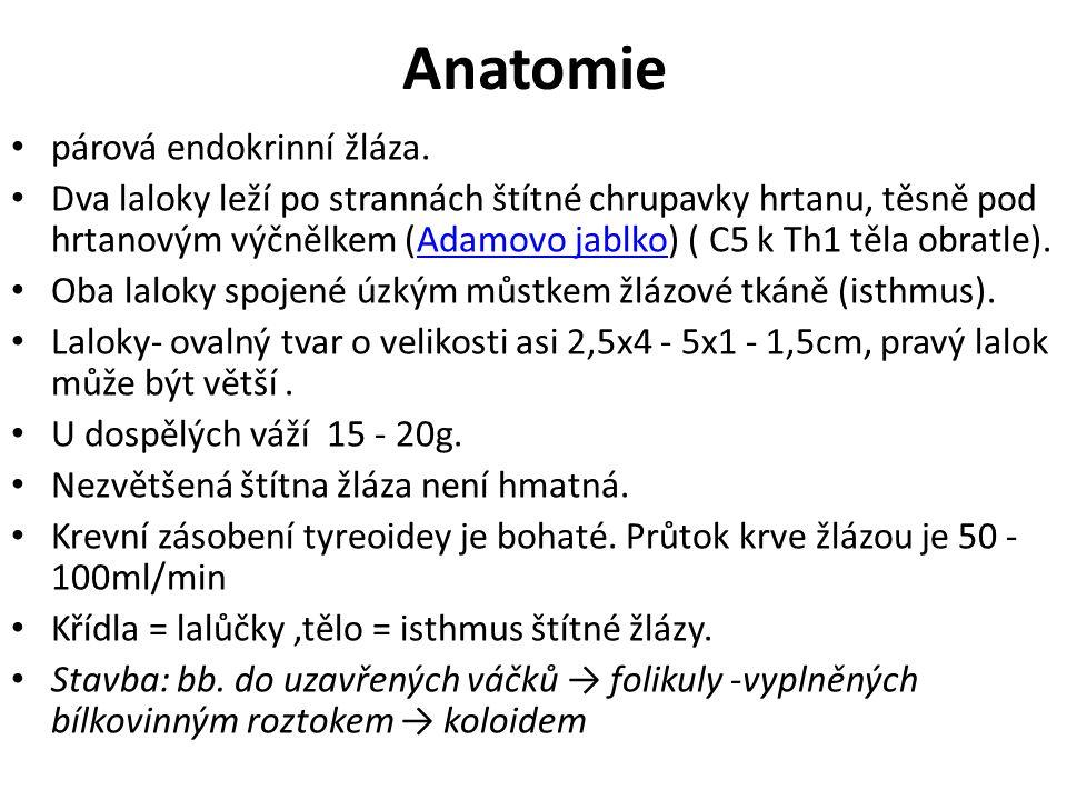 Anatomie párová endokrinní žláza.