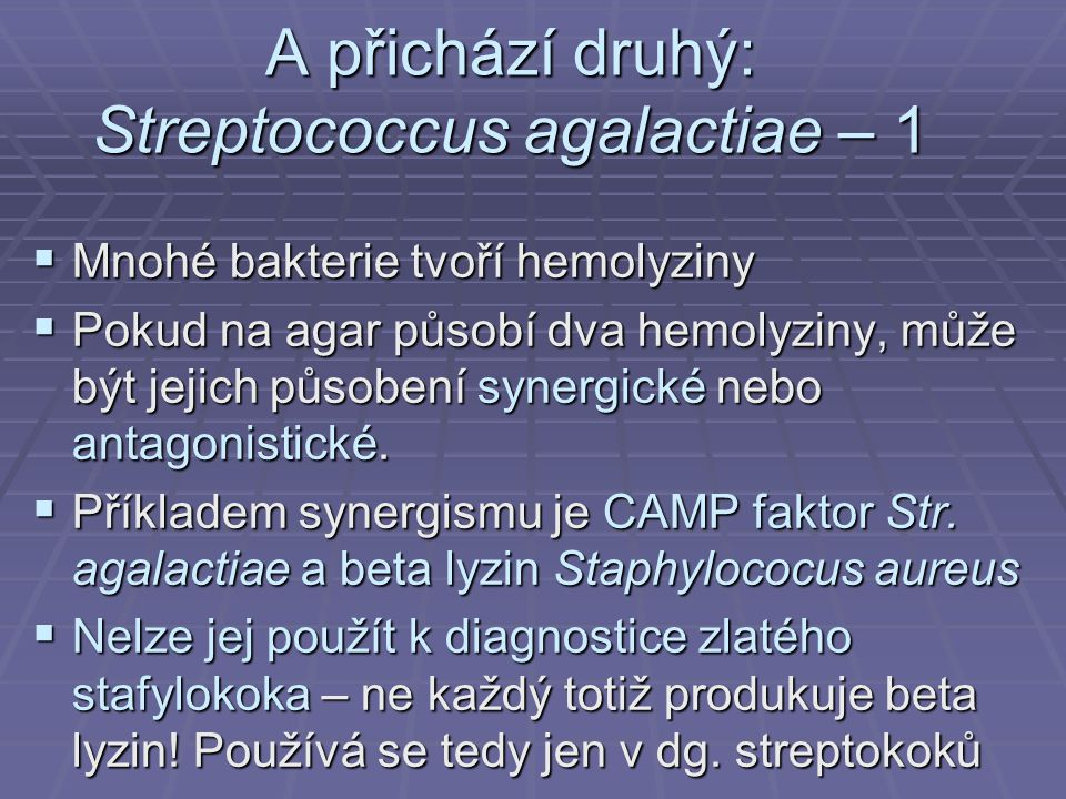 A přichází druhý: Streptococcus agalactiae – 1