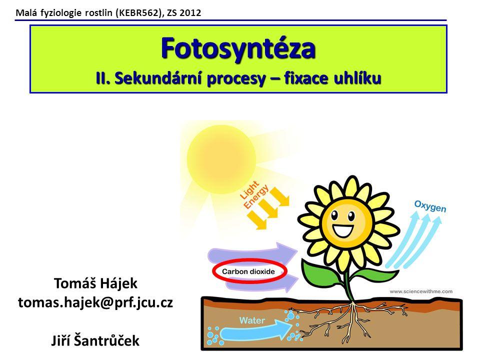 Fotosyntéza II. Sekundární procesy – fixace uhlíku