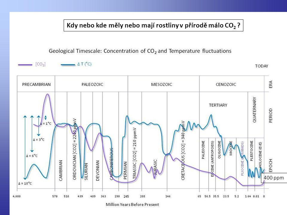Kdy nebo kde měly nebo mají rostliny v přírodě málo CO2